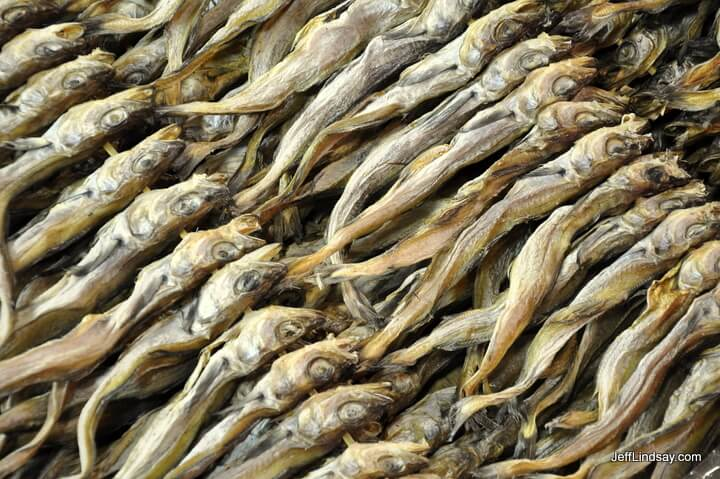 Dried fish at the Jangbu Fish Market in Seoul, Korea, October 2011.