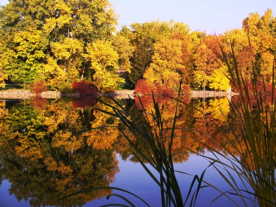 Photograph of the little lake in front of the Kimberly-Clark West Office Building in Neenah at 2100 Winchester Road, on a still October morning, 2003.