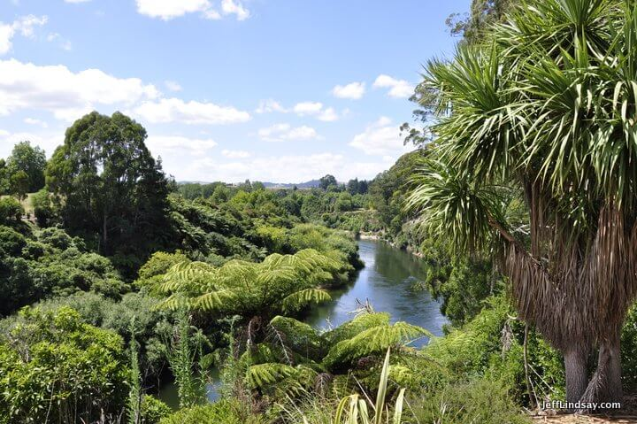 river by Leamington, New Zealand.