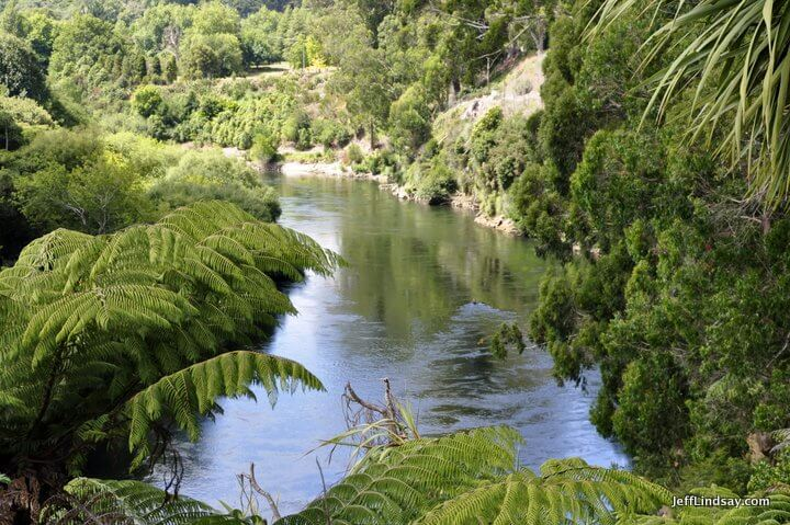 New Zealand: river